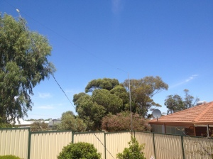 View of a backyard with a dipole antenna. Feedline can be seen coming down at a 30º angle